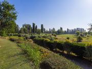 Le Vigne - Villafranca di Verona (VR) - Campo