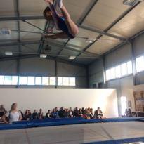 Sara vola in alto