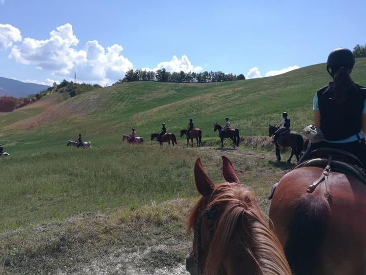 Una vacanza incredibile: Fermignano e i suoi cavalli