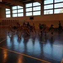 Civitas Volley ASD  – Monelli verde