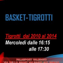 BASKET CAT. TIGROTTI